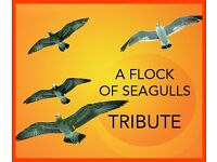 A FLOCK OF SEAGULLS Tribute looking for GUITARIST & VOCALIST