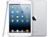 Apple iPad Air Mini