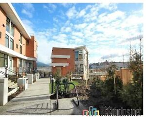 Available July 1st 2017 - 3 Bedroom 2 Bath T/H with View $3200