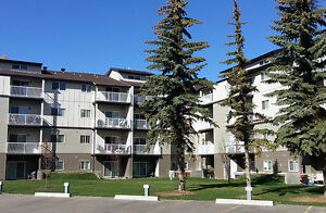 1 BR Apartment South West Edmonton, 19th Ave. and 111th St.