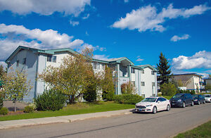 Ashbury Court Apartments - 1 Bedroom Apartment for Rent...