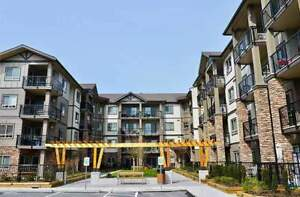 Lexington Court Apartments - 1 Bedroom + Den Apartment for...