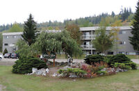 Forest Glen Apartments - Bachelor Apartment for Rent Prince...