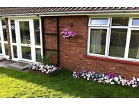 Beautiful one bed bungalow exchange in Chelmsford Essex