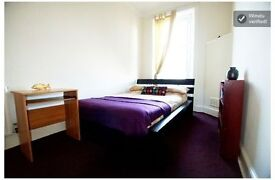 Subsidised Double Bedroom for looking after a cat - 3 Month