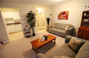 Southdale Park Apartments 1 Bedroom Apartment For