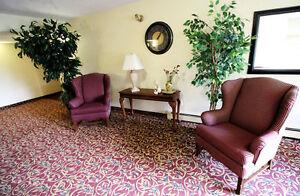 The Ridgewood Apartments - 1 Bedroom Apartment for Rent Edmonton