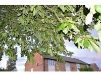 2 BED MAISONETTE FROM RURAL LEICESTERSHIRE TO ANY RURAL AROUND NORTHAMPTON OXFORD READING CAMBRIDGE