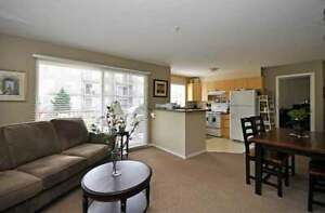 Delair Court Apartments - 2 Bedroom w/fireplace Apartment for...