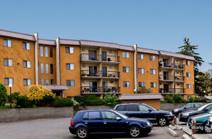 Stetson Place Apartments - 1 Bedroom Apartment for Rent Kamloops