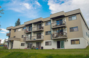 Paradise Park Apartments - 1 Bedroom Apartment for Rent...