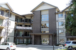 Wellesley Court Apartments - 2 Bedroom Apartment for Rent...
