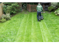 Garden Maintenance, Lawn Care & Tree Surgery in All London Areas!