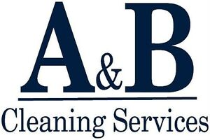 Professional Office Cleaners-Amazing RATES! Kingston Kingston Area image 1