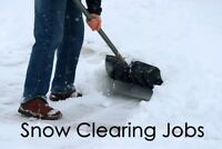Snow Clearing Jobs!