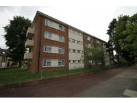 A lovey large spacious 2/3 Bed flat -good condition. First floor with sepatate kitchen and bathroom.