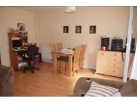 Large 2 Bed Maisonette in SE1- Needing 2/3 BED SW/SE Areas