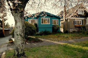 $800-1br-UBC/Langara-girl only/all utilities included
