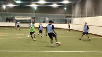 1on1/Group Indoor Soccer Training with an Ex Professional Player