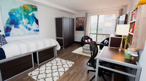 Downtown, 1 Ensuite Bedroom, Lease Transfer June &July 2018