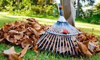 FALL LAWN SERVICES ST ALBERT