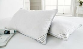 New Duck Feather and Down Pillows ×4
