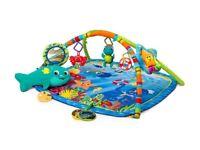 Baby Einstein Nautical Friends Gym/ Playmat