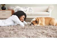 ★ S-B Carpet Cleaning & Upholstery Steam Cleaning Service With High – Tech Equipment ★