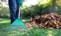 SPRING CLEANUP from $60 - Aeration De-thatch Mow Trim $99