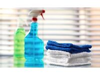 Cleaning & Ironing Services 07574001426