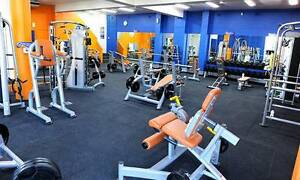 Plus Fitness Bondi Junction Eastern Suburbs Preview