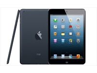 iPad Mini 16gb Wifi Black