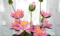 New Artificial Lotus Flower / 5 Colors, 50 % Lower Than Store