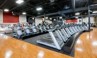 Membership transfer, gold's gym St-Laurent 29$ every two week