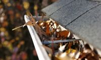 Eavestrough Cleaning & Fall Clean Up