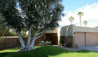 Newly Listed 2 Bed/1 Bath Palm Springs Condo