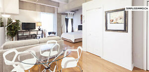 Loft fully furnished in PLACE DES ARTS