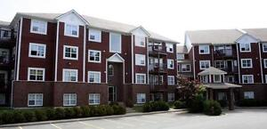 Large Apartments- Quiet Setting!