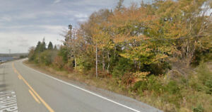 Property For Sale (Two Lots) - Eastern Shore $8500