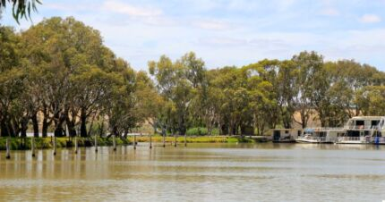Cabins by the River Murray Bridge Murray Bridge Area Preview
