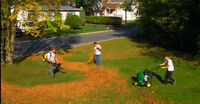 Lawn Care Technician: Spring and Summer Positions Avail.