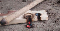 Learn Bow Drill Friction Fire Survival Skills!