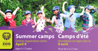 Registration for summer zoo camps/L'inscription