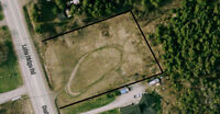 Commercial Land for sale almost one acre Hwy 48 & Lake ridge