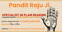 BEST ASTROLOGER & PSYCHIC RAJUJI® IN SURREY VANCOUVER™