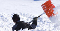 Snow shoveling @ $20/house: Includes ice chipping and driveways!