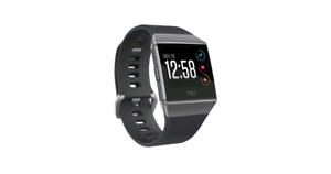 Fitbit ionic large band