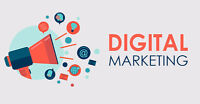 Online Marketing, SEO And Search Engine Optimization Expert