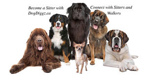 Dedicated, loving dog sitters and walkers WANTED