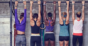 Profitable Online Women's Health and Fitness Business for Sale